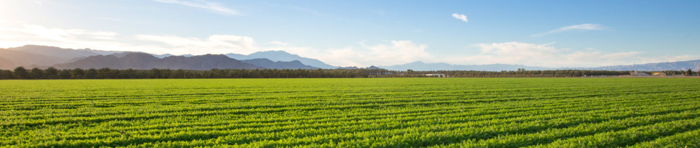 Top Hot Jobs in Agriculture