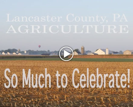 lancaster-county-agriculture
